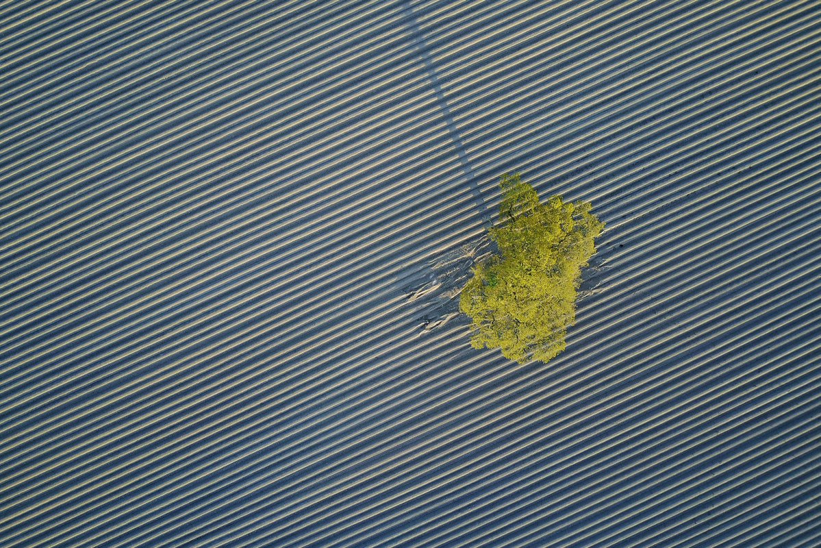 .@mattparryphoto takes flight with a @DJIGlobal Mavic Pro. Beautifully composed #WexMondays https://t.co/x6oj7PQIdR