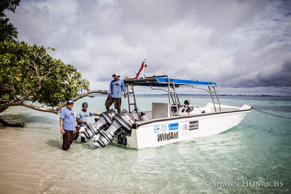 Thanks to @WildAid for working with @misoolecoresort to protect the #Misool marine reserve http://safinacenter.org/2017/04/misool-bluewater-shark-baitball-sign-conservation-success-raja-ampat-indonesia/…pic.twitter.com/a8azkxvdjW