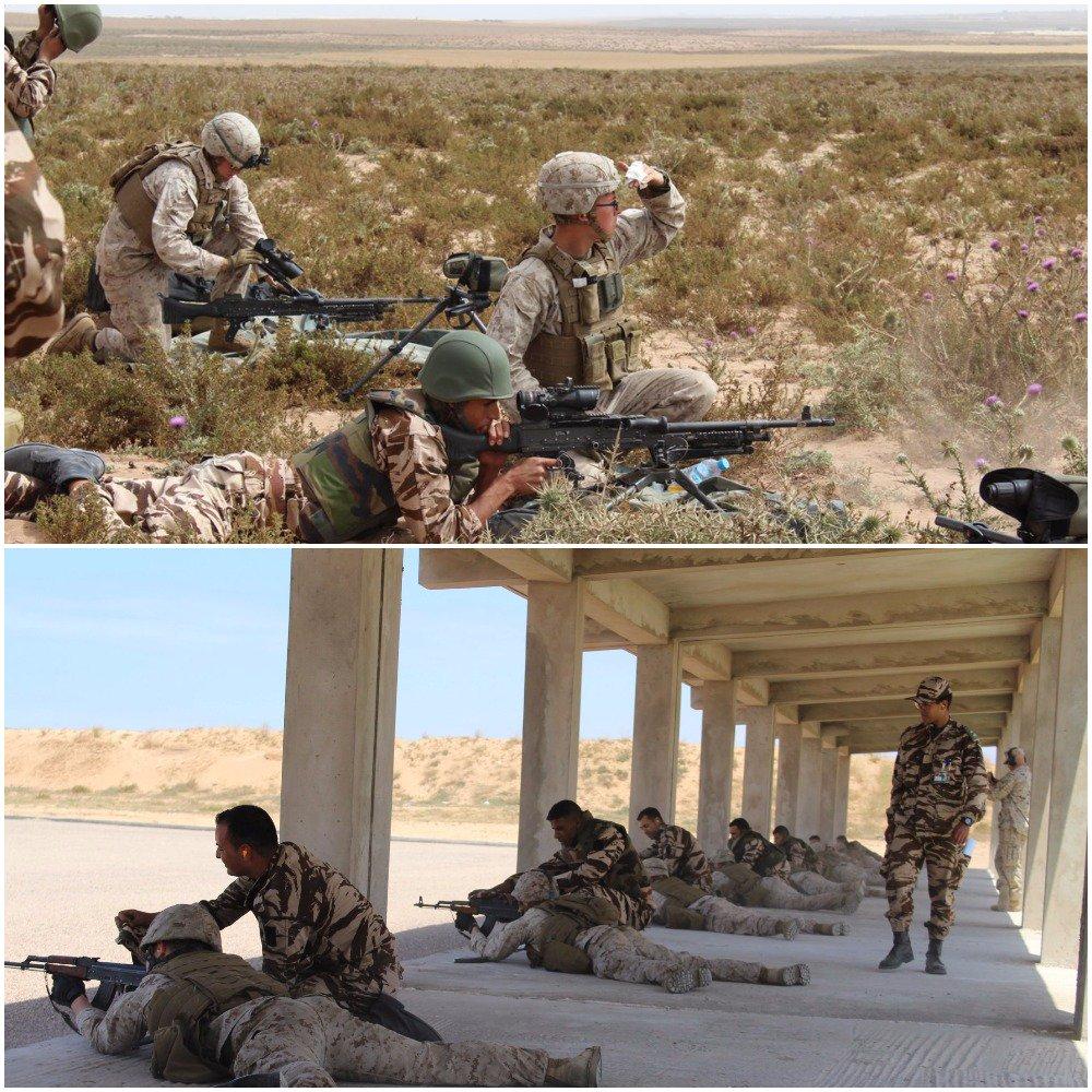 """انطلاق مناورات """"الأسد الإفريقي 17 """" في المغرب بمشاركة أمريكية C-RVsitUIAEaMxZ"""
