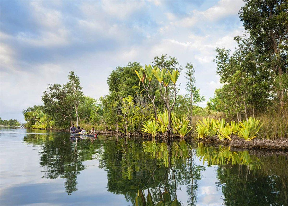 #Madagascar: an island unlike any other  http:// lptravel.to/NLUaeR  &nbsp;   via @LPTraveller #travel #lp<br>http://pic.twitter.com/0CGjcQcyMo