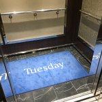 知ると納得!曜日が書かれた面白いカーペットに隠された秘密とは…!