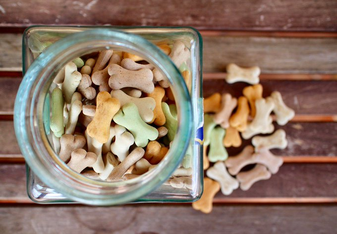 5 Pawesome Dog Treat Recipes