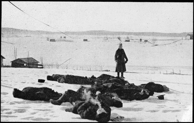 Risultati immagini per finnish civil war terror