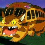 ネコバスのコスプレ
