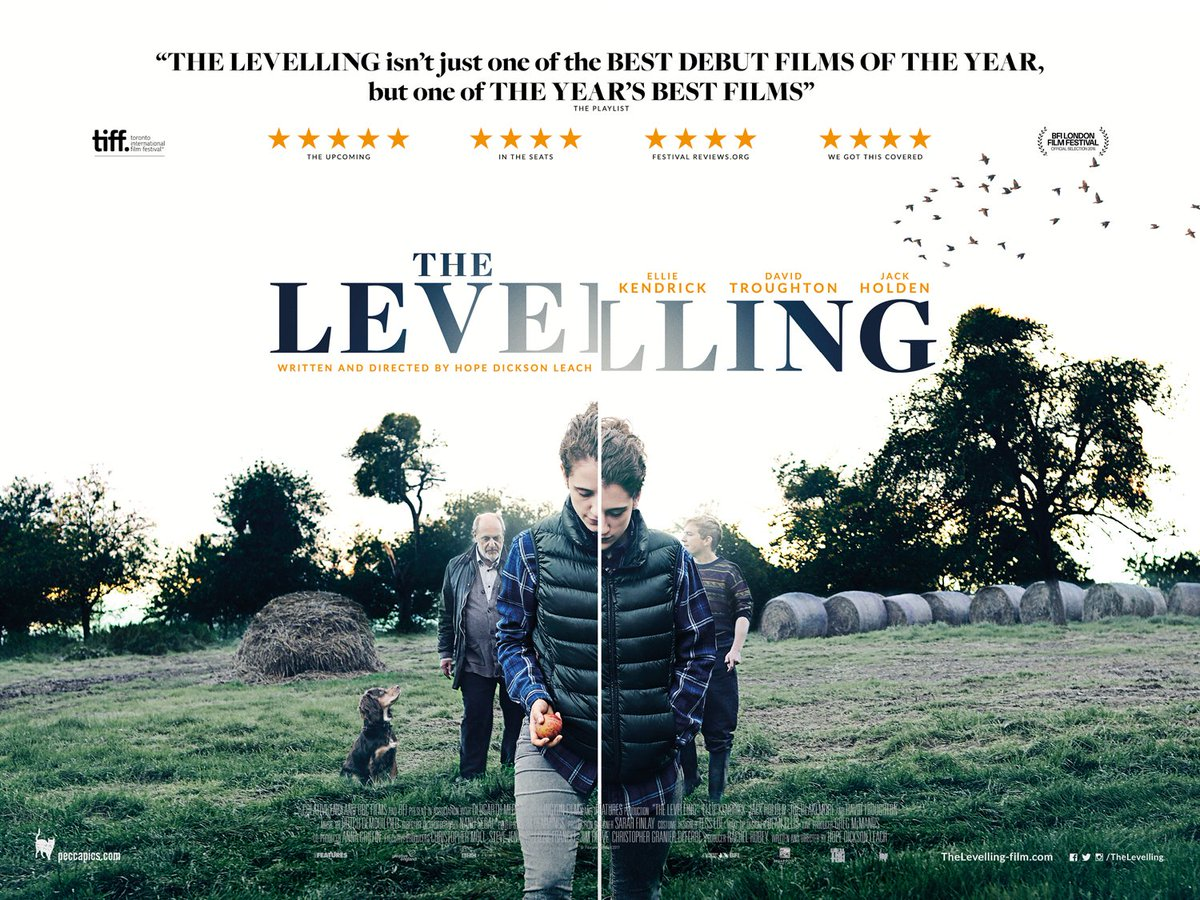 Image result for the levelling poster