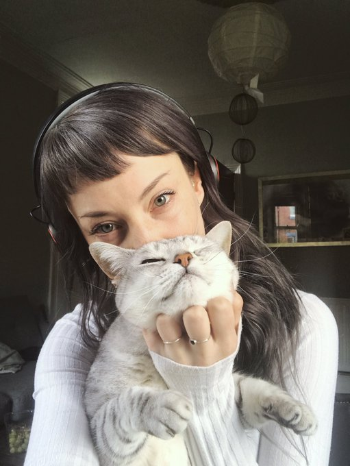 Cats. Heaven sent. Fluffy, sleepy, unhelpful dorks. https://t.co/UDfk29CRUu