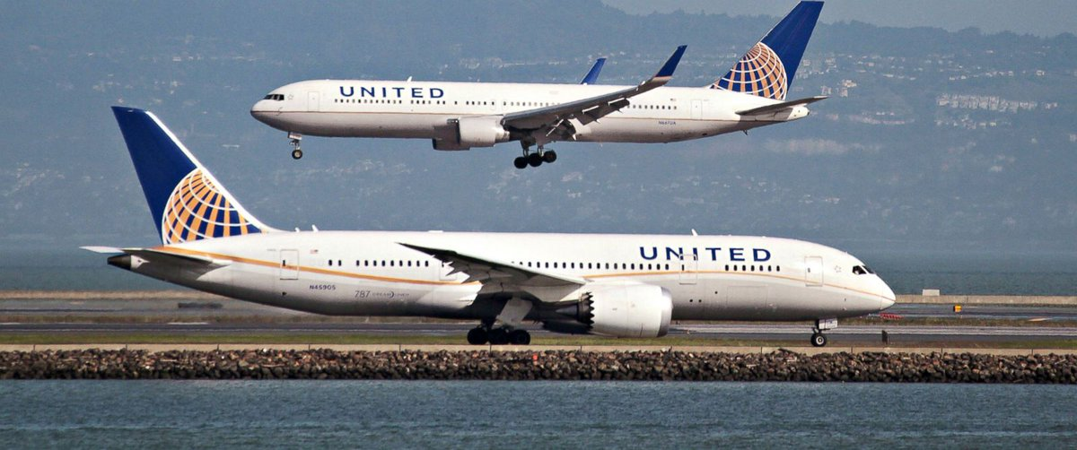 United investigates report that rabbit died on flight https://t.co/T7g...