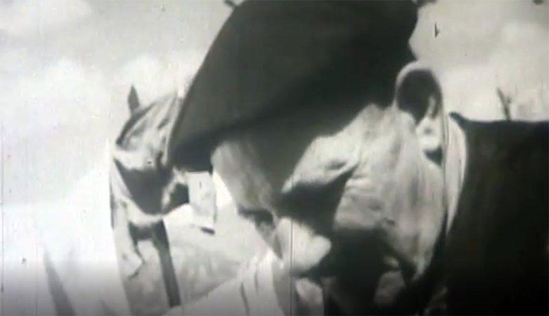 Resultat d'imatges de Documentaire · Documental « A la sueur de ton front »
