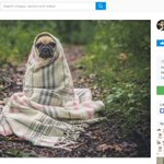 When can you use someone else's image on social media? https://t.co/VPl6fh14OA Understanding image copyright