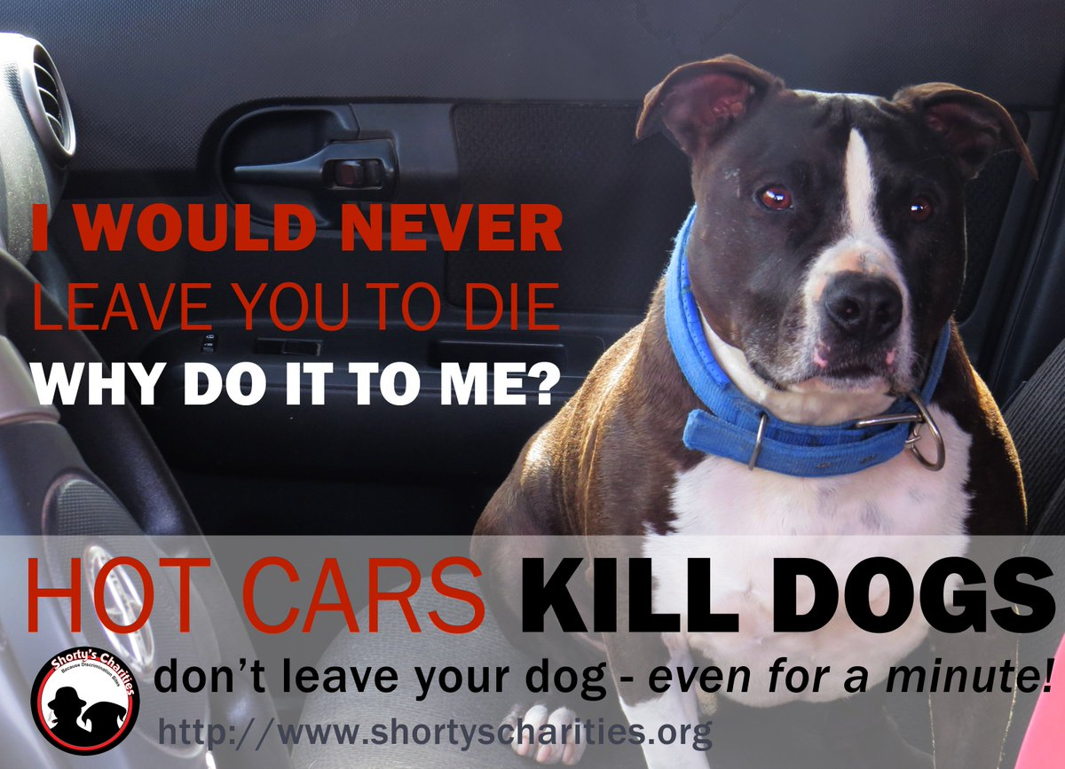 I would never leave you to die, why would you do it me?  HOT CARS KILLS DOGS PEOPLE! https://t.co/uq2gWXef1k
