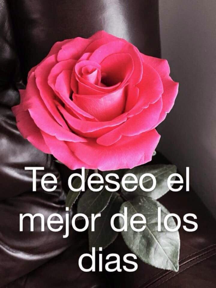 Montse On Twitter Buenos Días Corazónmuchísimas Gracias Por
