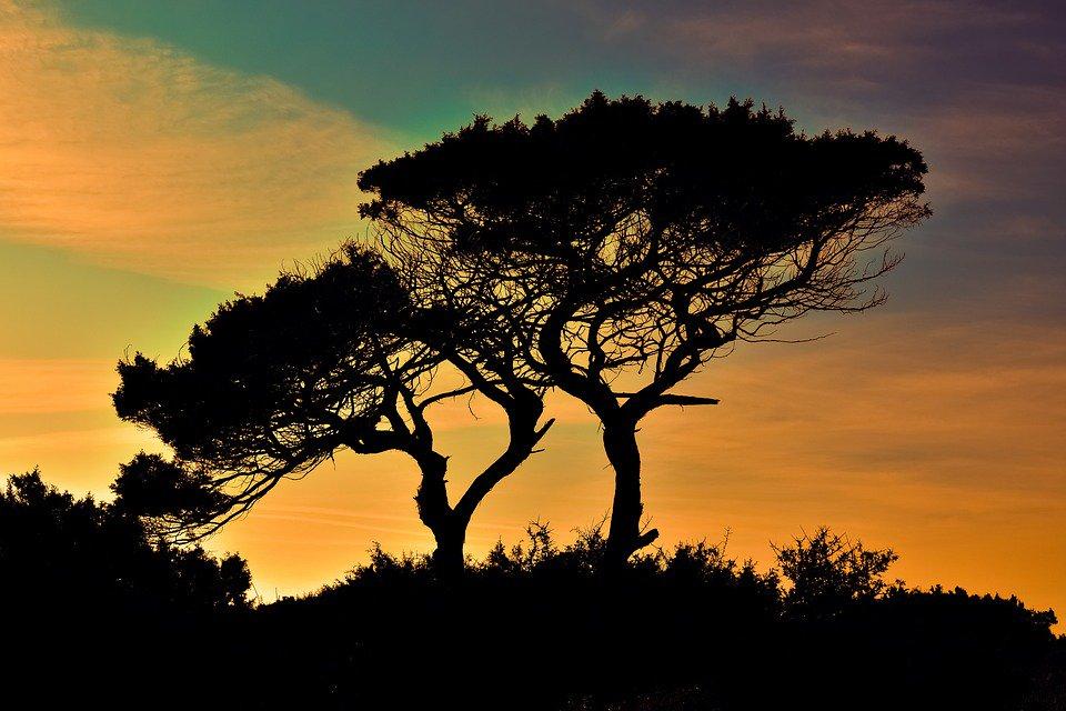 #Pôr do Sol <br>http://pic.twitter.com/8JqhLmho51