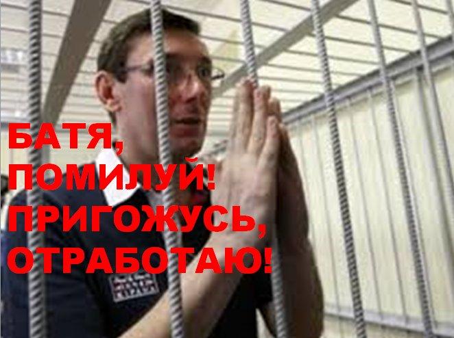 Суд над Януковичем: адвокат беглого экс-президента анонсировал новые факты - Цензор.НЕТ 3459