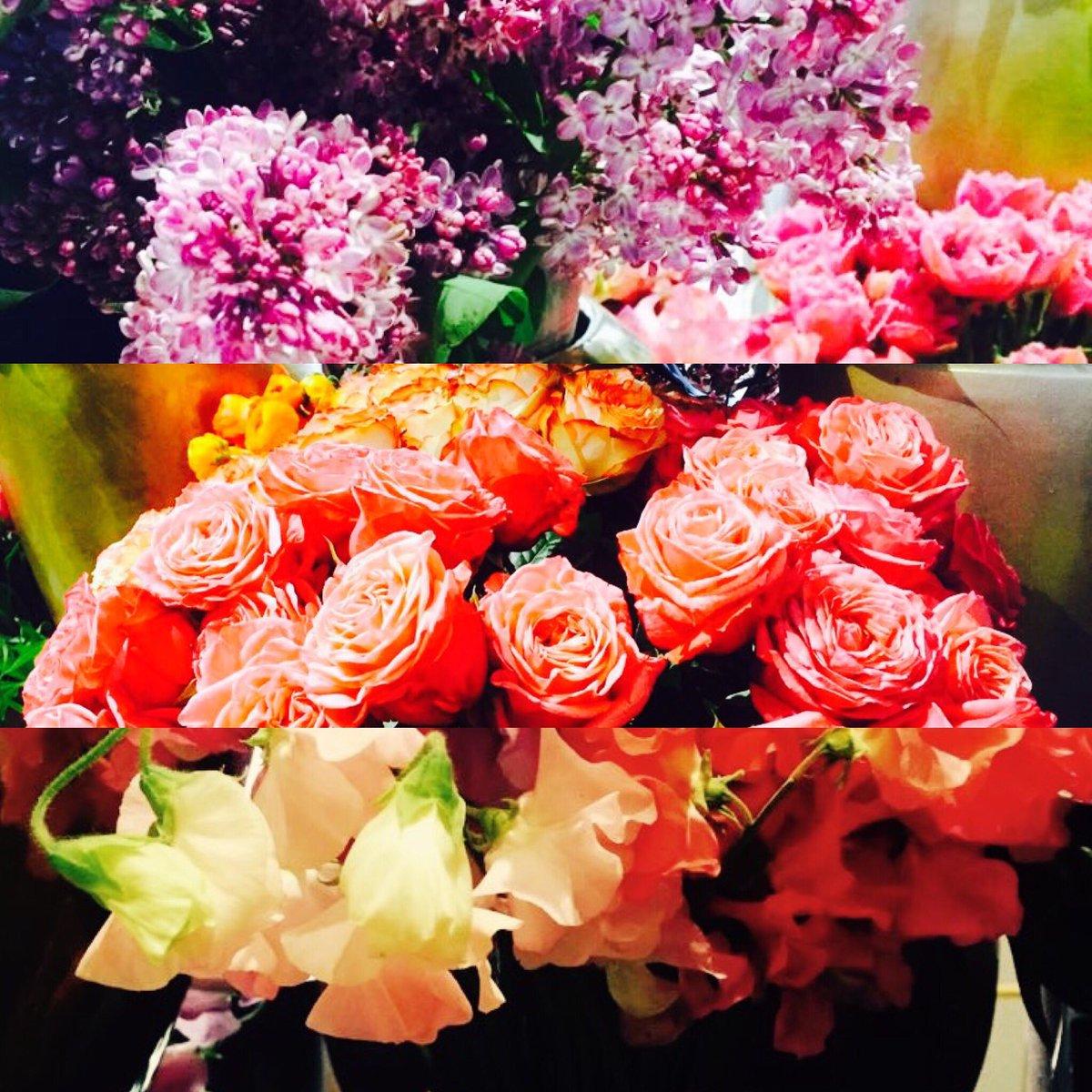 """Verschiedene Blumen Mai Galerie Von Blütesiegel On Twitter: """"farbenfroh In Den Mai"""