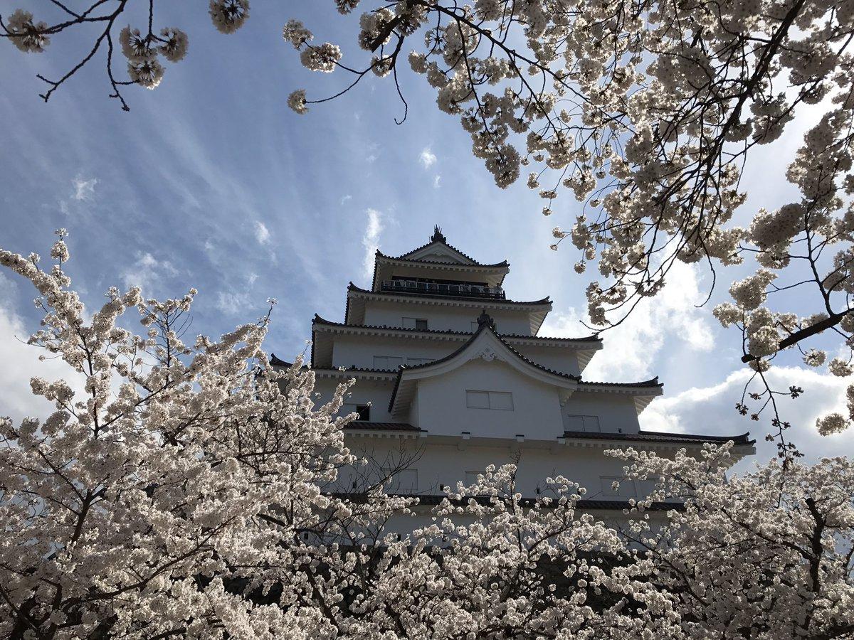 #東北でよかった   会津若松市の鶴ヶ城です。 https://t.co/JmOwIygwOt