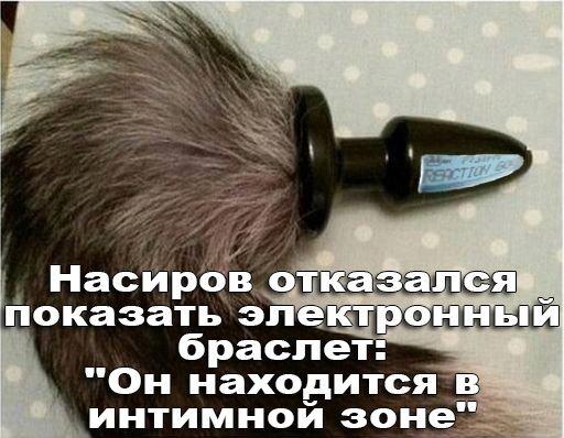"""Насиров отказался показать электронный браслет: """"Он находится в интимной зоне"""" - Цензор.НЕТ 4210"""