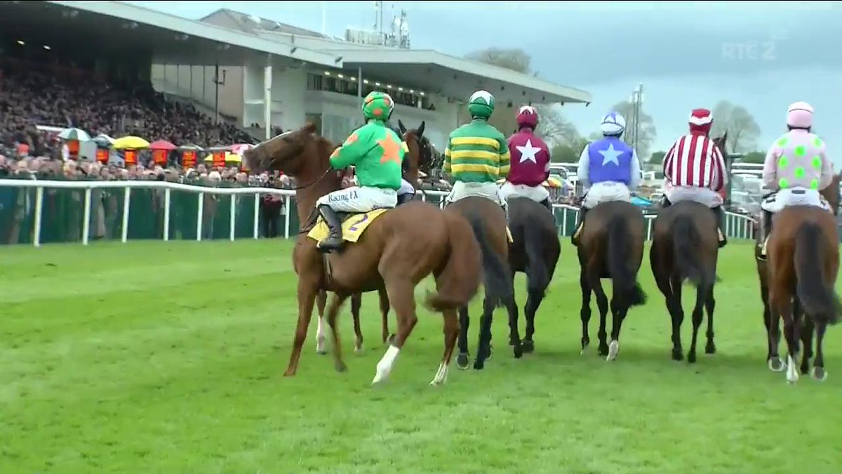 Great Field, a member of our jumps 50 To Follow, wins the Grade 1 Novi...