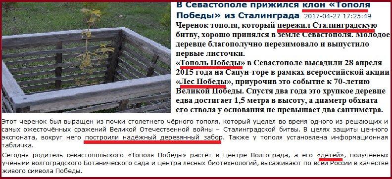 Конфискованные судом $1,5 млрд долларов Януковича и его окружения пойдут на повышение боеспособности Украины, - Порошенко - Цензор.НЕТ 2504