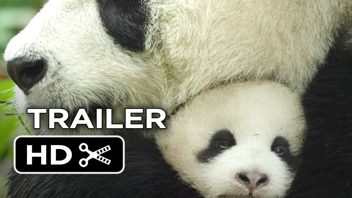 watch born in china online free