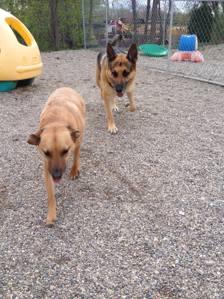 Dega and Chip come in for their close up!