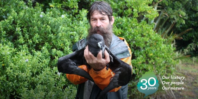 2014: Chippy Wood of Punakaiki helps a juvenile Westland petrel that got stranded during take-off: https://t.co/BUZZNqRZyS #DOCturns30 https://t.co/CnxpNzP0sb