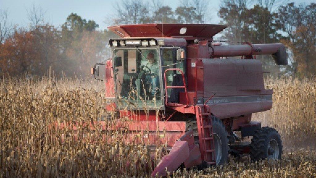 US farmers hope NAFTA survives the Trump era https://t.co/jGuypgxIVy h...