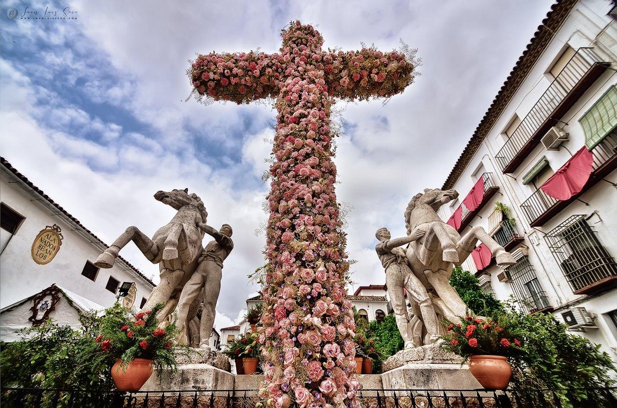 Joven sinvergüenza destroza cruz de mayo en Cordoba
