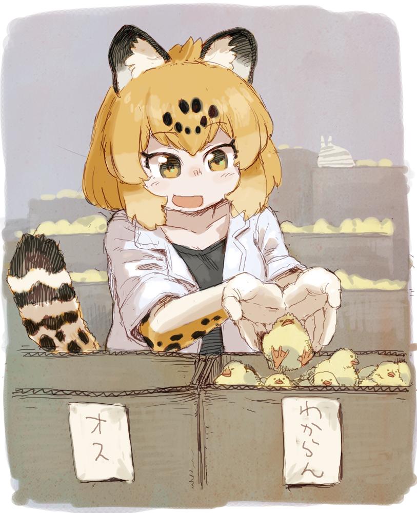 ひよこを選別するジャガーさん