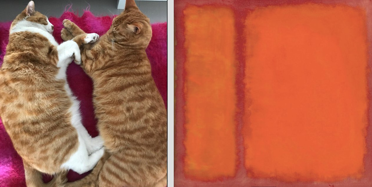 Now Ron and Tiger stage a live Rothko recreation. https://t.co/m0nHlkPPJ6