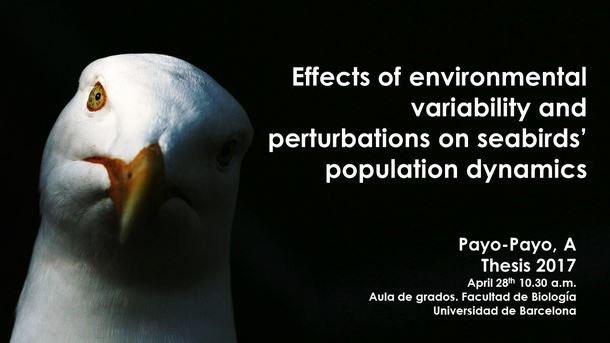El nostre #FF d'aquesta setmana és per a la Doctora Ana Payo @anitapayo Enhorabona!! https://t.co/MEHWaCauUj