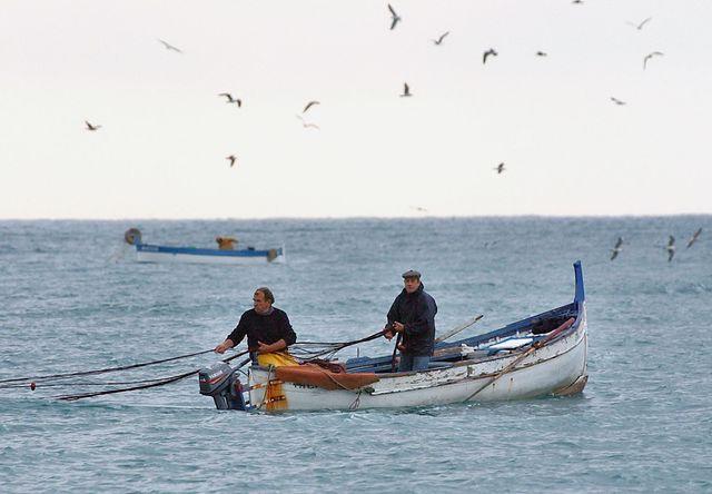 Embarquer sur un bateau de pêche, direction le grand large : le pescatourisme ► https://t.co/MM9Fl5HWQ7