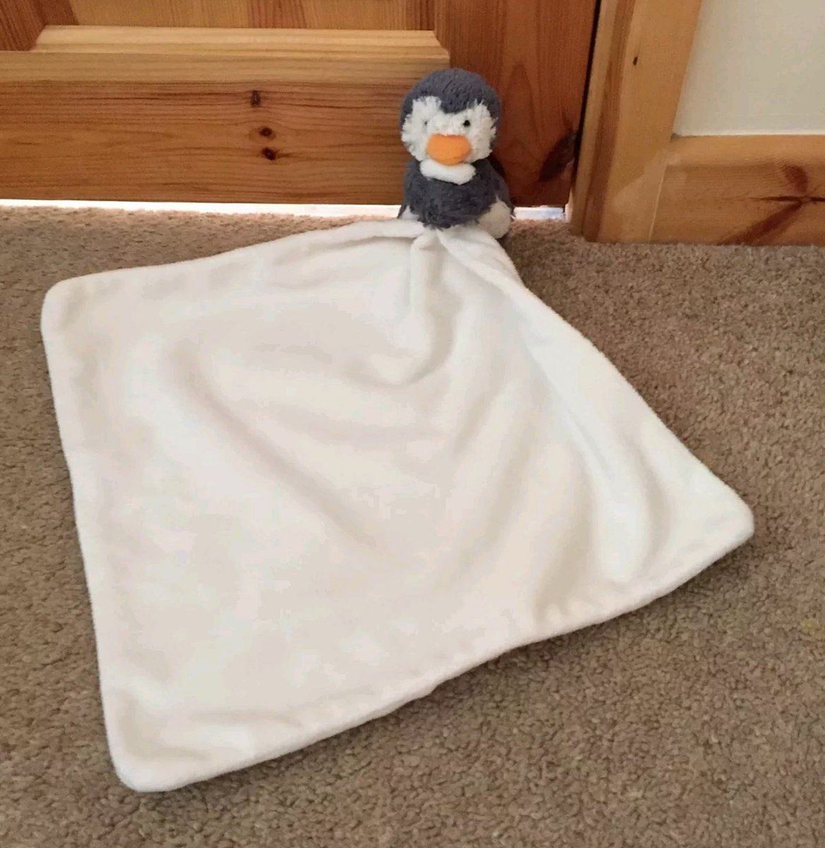 We need to find Mr Penguin.   He was dropped yesterday around Gallows Street #Dromore https://t.co/r1QLPJJWmU
