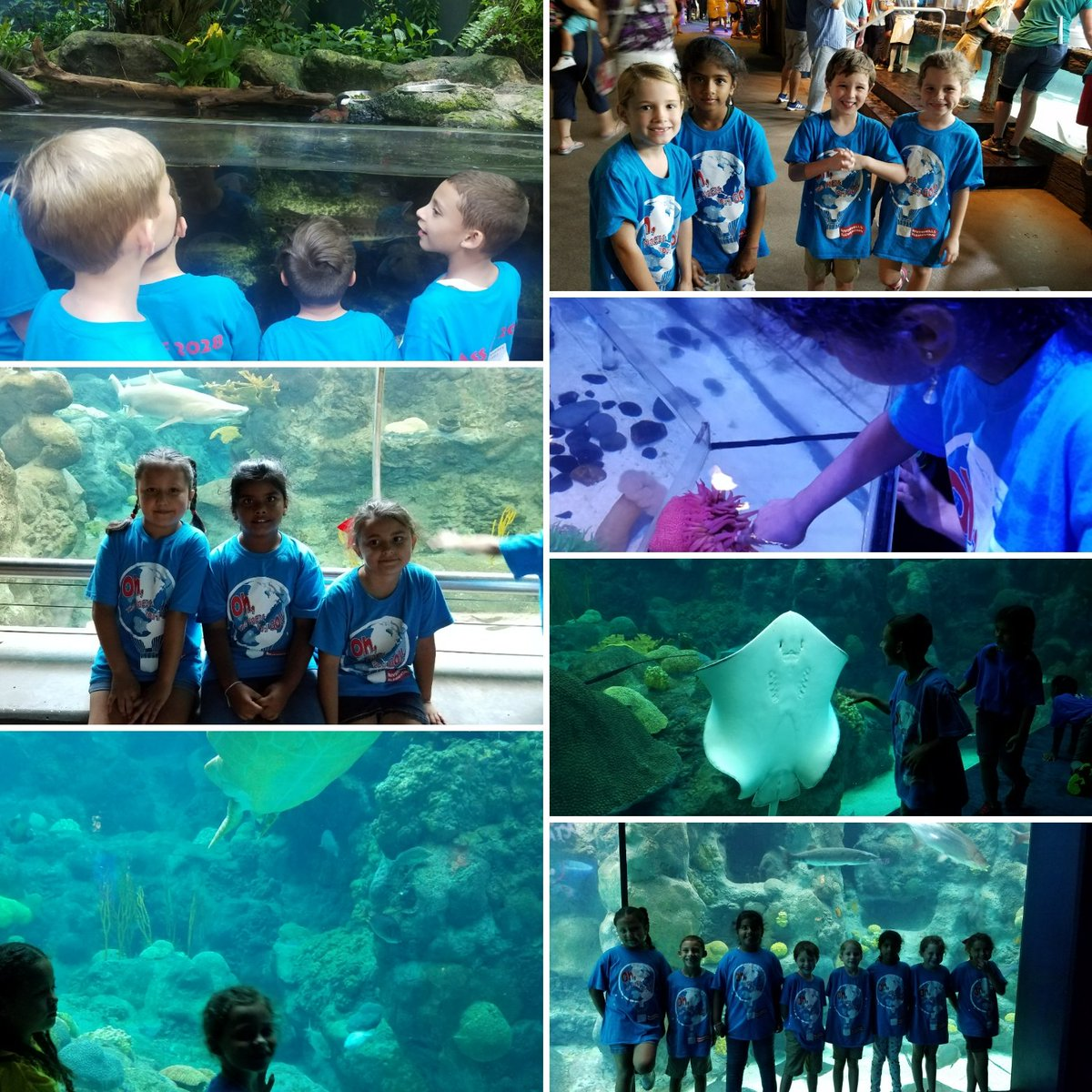 Fun times at the Florida Aquarium! @HCPSRiverhills #fieldtrip #classshirts #claasof 2028