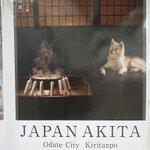新宿駅構内に貼ってある秋田県のポスター、良すぎる pic.twitter.com/PUJ2ybh6c…