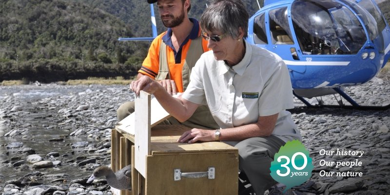 2015: Lyndon Slater and Faye Gordon releasing juvenile whio onto the West Coast's Styx River: https://t.co/lJWPCPARqA #DOCturns30 https://t.co/UBEAokUI99