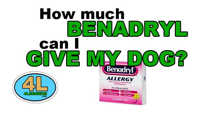 4leggers On Twitter How Much Benadryl Can I Give My Dog Httpst