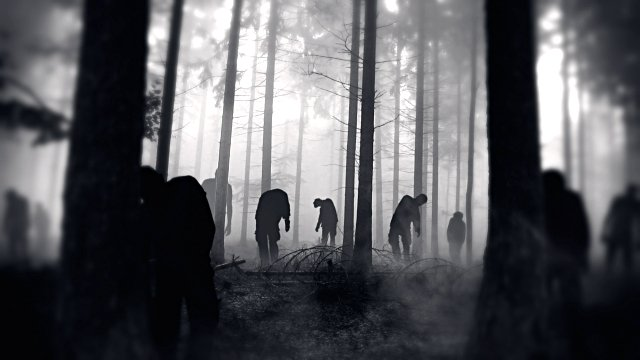 After hearing Theresa May's speech the remnant Tories are trying tae get out of the forest. #ScotRef