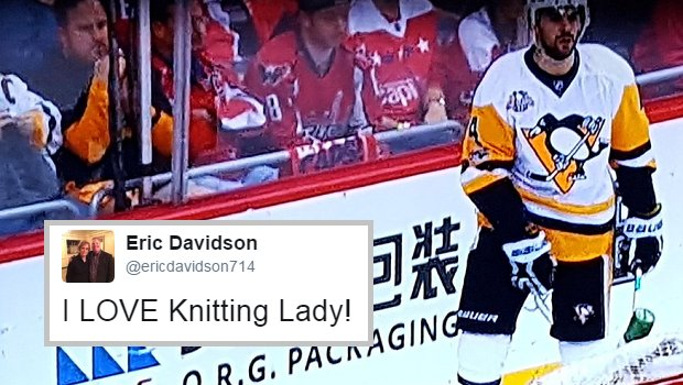 Knitting Lady Penguins : A penguins fan was knitting in the front row of game