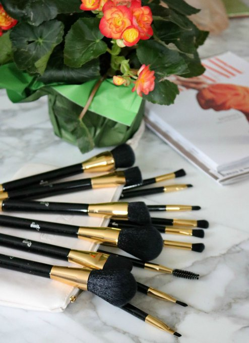 Qivange Makeup Brushes Review