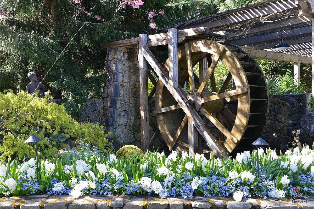 the butchart gardens on twitter