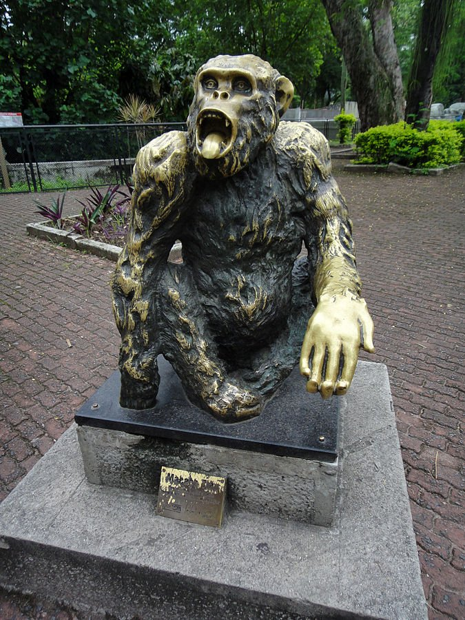 In a 1988 election for mayor in Rio de Janeiro, a chimpanzee named Tião received over 400,000 votes and came third.