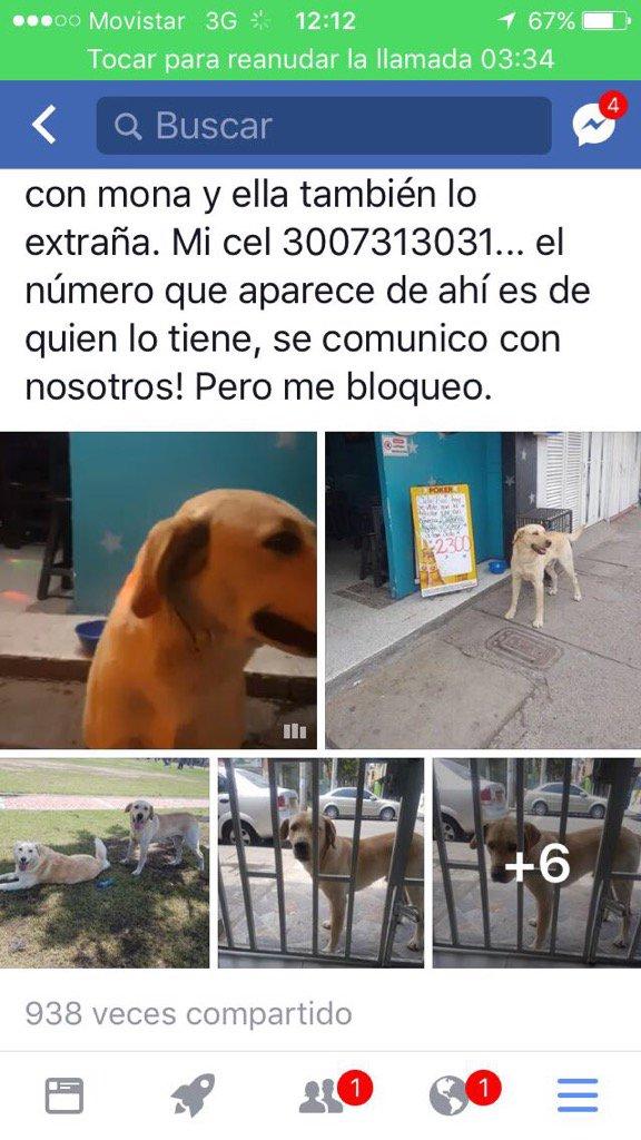 Amparo Grisales on Twitter: \