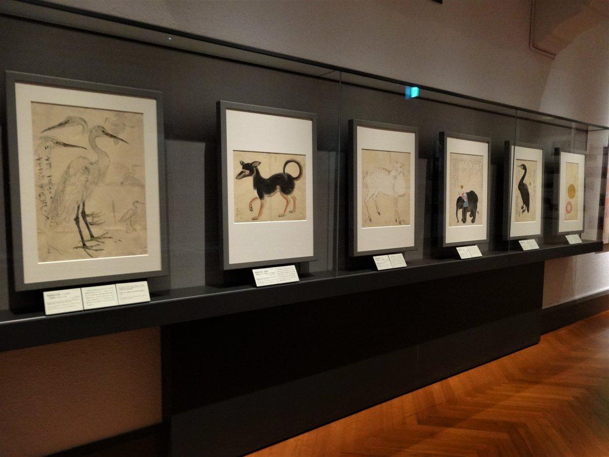 """Lycee(リセ) on Twitter: """"実は私、トーハクで関根雲停の博物画を見て ..."""