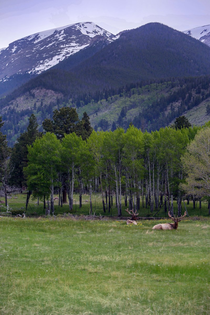 RockyNPS On Twitter The Worlds Favorite Season Is Spring All Things Seem Possible In May
