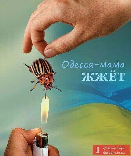 У ряда пророссийских активистов Одессы проходят обыски, - Интерфакс - Цензор.НЕТ 795