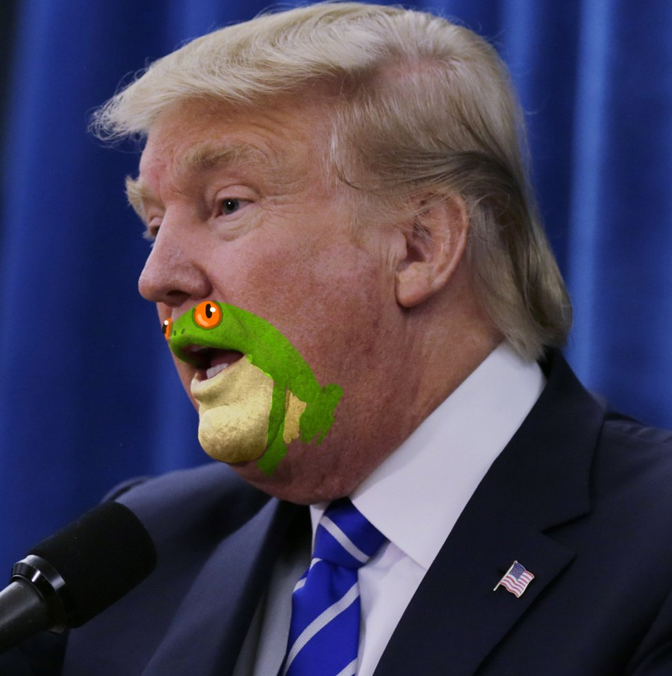 """BREAKING: Frog Painted on His Mouth Announced He is Now in Complete Control of """"This Horrendous Meat Sack"""". https://t.co/S2p2SathWy"""