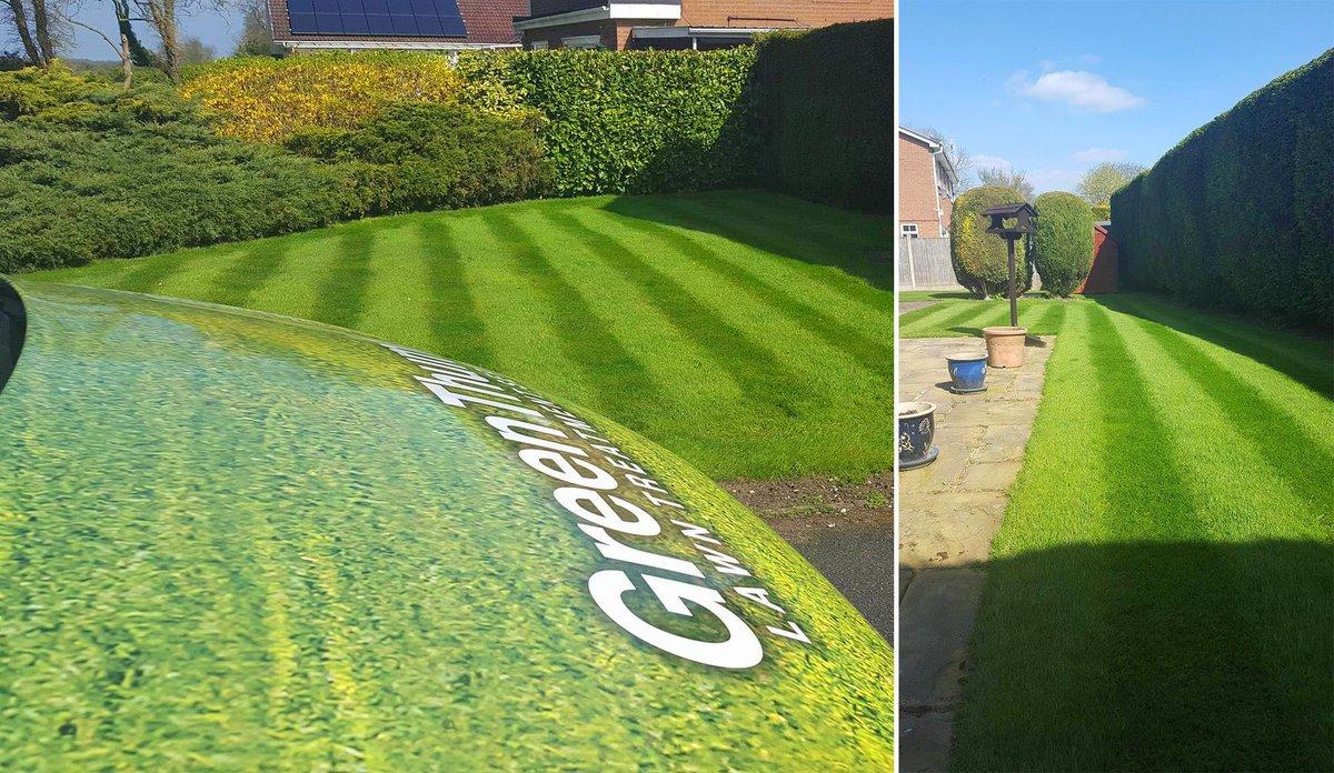Good idea. green thumb lawn maintenance remarkable