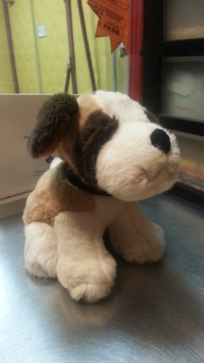A sad little girl lost her toy puppy at Secret Life Of Pets. We found it! If anyone knows the owner, let her know! https://t.co/hU8xmNg50R