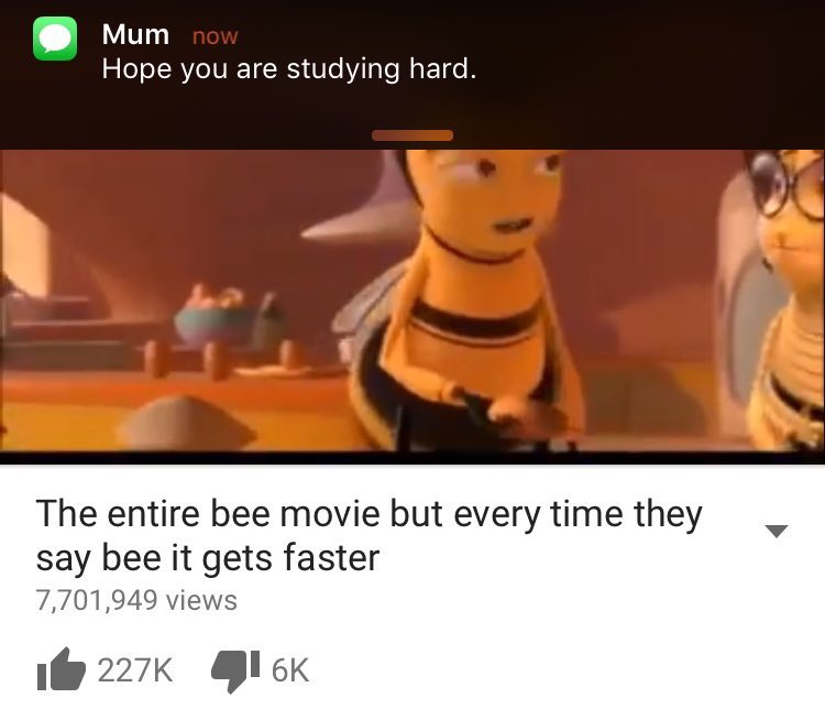 The bee movie porn