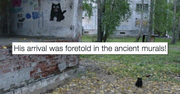 We Saved All of the Best Tweets About Cats From 2016 https://t.co/uz7Nw8HNC4 https://t.co/xfPmvwv8wO
